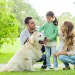Introducing an Adopted Dog to Your Small Children
