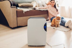Benefits of a Dehumidifier to You and Your Family