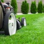 4 Most Common Signs You Need a Professional Landscaping Company
