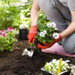 4 Summer Home Improvements That Will Make You Love Your Property