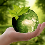 Sustainable Living: What is it and How to Start